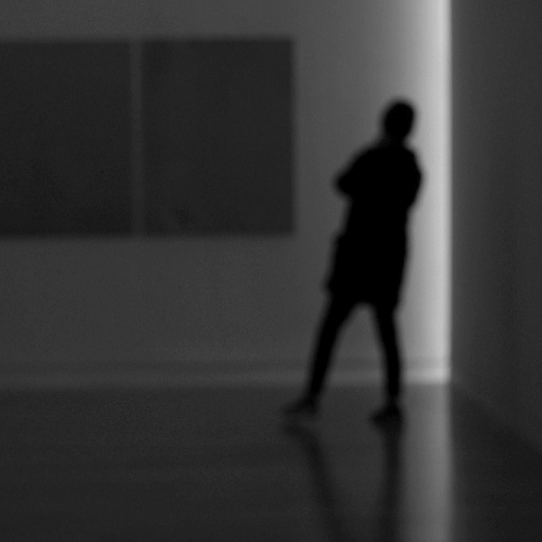 Kim Pieters locus12 installAdam2014
