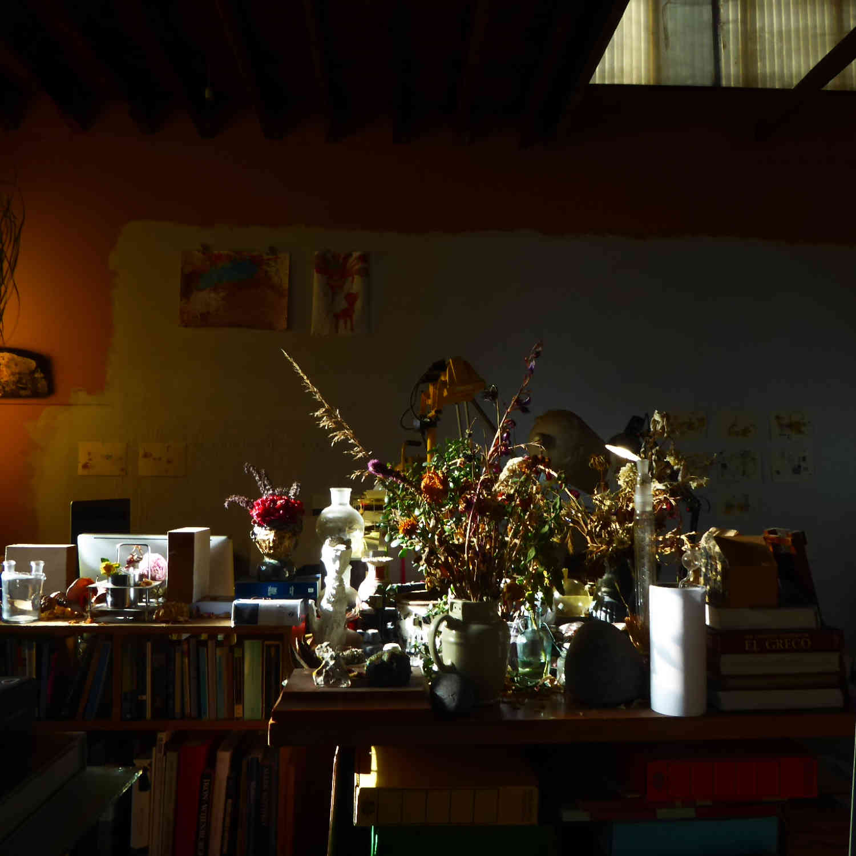 Kim Pieters photograph studio03